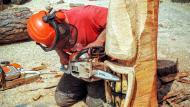 Calaf: escultures de fusta tallades amb motoserra  Ramon Sunyer