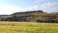 Bellmunt de Segarra:   Ramon Sunyer