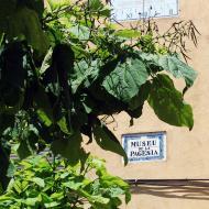 Sisteró: museu de la pagesia  Ramon Sunyer