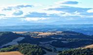 Conill: vall del llobregós  Ramon Sunyer