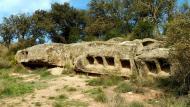 Montcortès de Segarra: columbari  Isidre Blanc