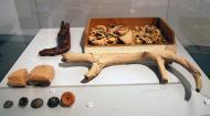Igualada: ossos  Ramon Sunyer