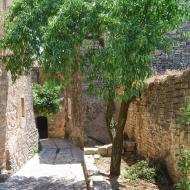 Sant Domí: vila closa  Ramon Sunyer