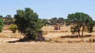 Tarroja de Segarra: pous  Ramon Sunyer