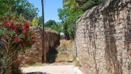 Tarroja de Segarra: horts  Ramon Sunyer