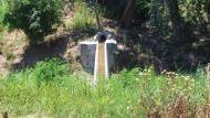Sant Antolí i Vilanova: l'aigua és abundant  Ramon Sunyer