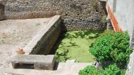 Portell: bassa  Ramon Sunyer