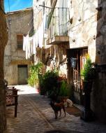 Palouet: carrer  Ramon Sunyer
