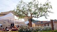 Vallbona de les Monges: Fira Vallbona Natura  Ramon Sunyer