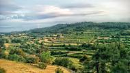 Rocallaura: paisatge  Ramon Sunyer