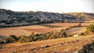 El Mas de Bondia: paisatge  Ramon Sunyer