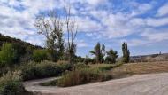 Vergós: paisatge del riu Ondara  Ramon Sunyer