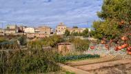 El Canós: vista des dels horts  Ramon Sunyer
