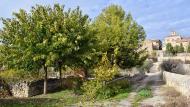 El Canós: Font  Ramon Sunyer