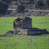 Selvanera: pou  Ramon Sunyer