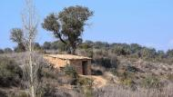 Granollers: Cabana de l'Espinal  Ramon Sunyer