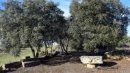 Selvanera: Mare de Déu de la Soledad  Ramon Sunyer