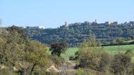 Palouet: vista de vifred  Ramon Sunyer