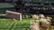 Montornès de Segarra:   Ramon Sunyer