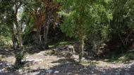 Passanant: Àrea de lleure la Font Voltada  Ramon Sunyer