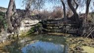 Sedó: Peixera  Ramon Sunyer