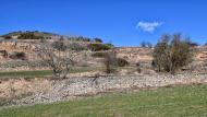 Rubinat: paisatge  Ramon Sunyer