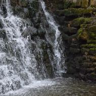 Concabella: Peixera de la Puda  Ramon Sunyer