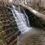Concabella: Peixera de la Puda al riu Sió  Ramon Sunyer