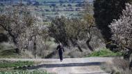 Bellveí:   Ramon Sunyer