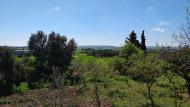 La Rabassa: paisatge  Ramon Sunyer