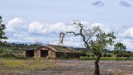 Les Pallargues: cabana  Ramon Sunyer