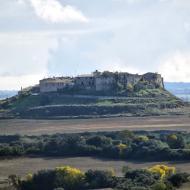 Granyanella: vista del poble  Ramon Sunyer
