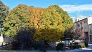 Santa Coloma de Queralt: Font de les Canelles  Ramon Sunyer