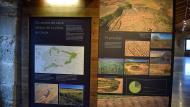 Concabella: Els secans de Lleida  Ramon Sunyer