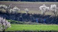 Cervera: XX Marxa dels castells  Ramon Sunyer