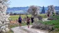El Llor: XX Marxa dels castells  Ramon Sunyer