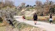Bellveí: XX Marxa dels castells  Ramon Sunyer