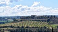 Alta-riba: mirant a Santa Fe  Ramon Sunyer