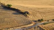 Gospí: paisatge  Ramon Sunyer