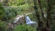 Santa Perpètua de Gaià: Peixera al riu Gaià  Ramon Sunyer