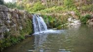 Santa Perpètua de Gaià: Peixera del Gaià  Ramon Sunyer