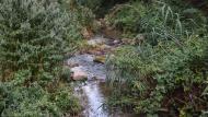 Santa Perpètua de Gaià: Riu Gaià  Ramon Sunyer