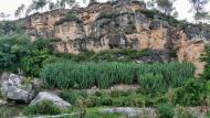 Santa Perpètua de Gaià: Horts  Ramon Sunyer