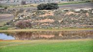 El Plans de Sió: Aiguamolls  Ramon Sunyer
