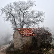 Ferran: Gebrada  Ramon Sunyer