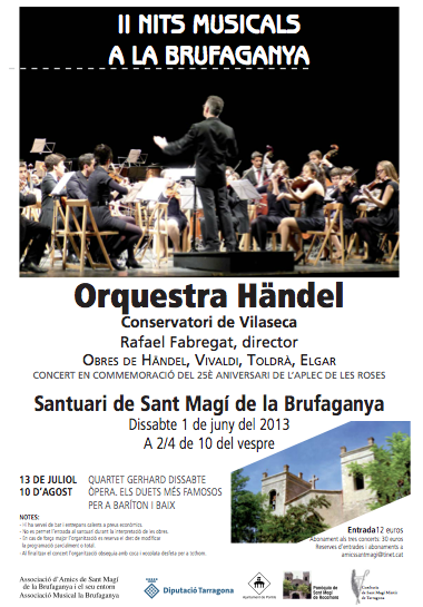cartell II Nits Musicals a la Brufaganya 2013