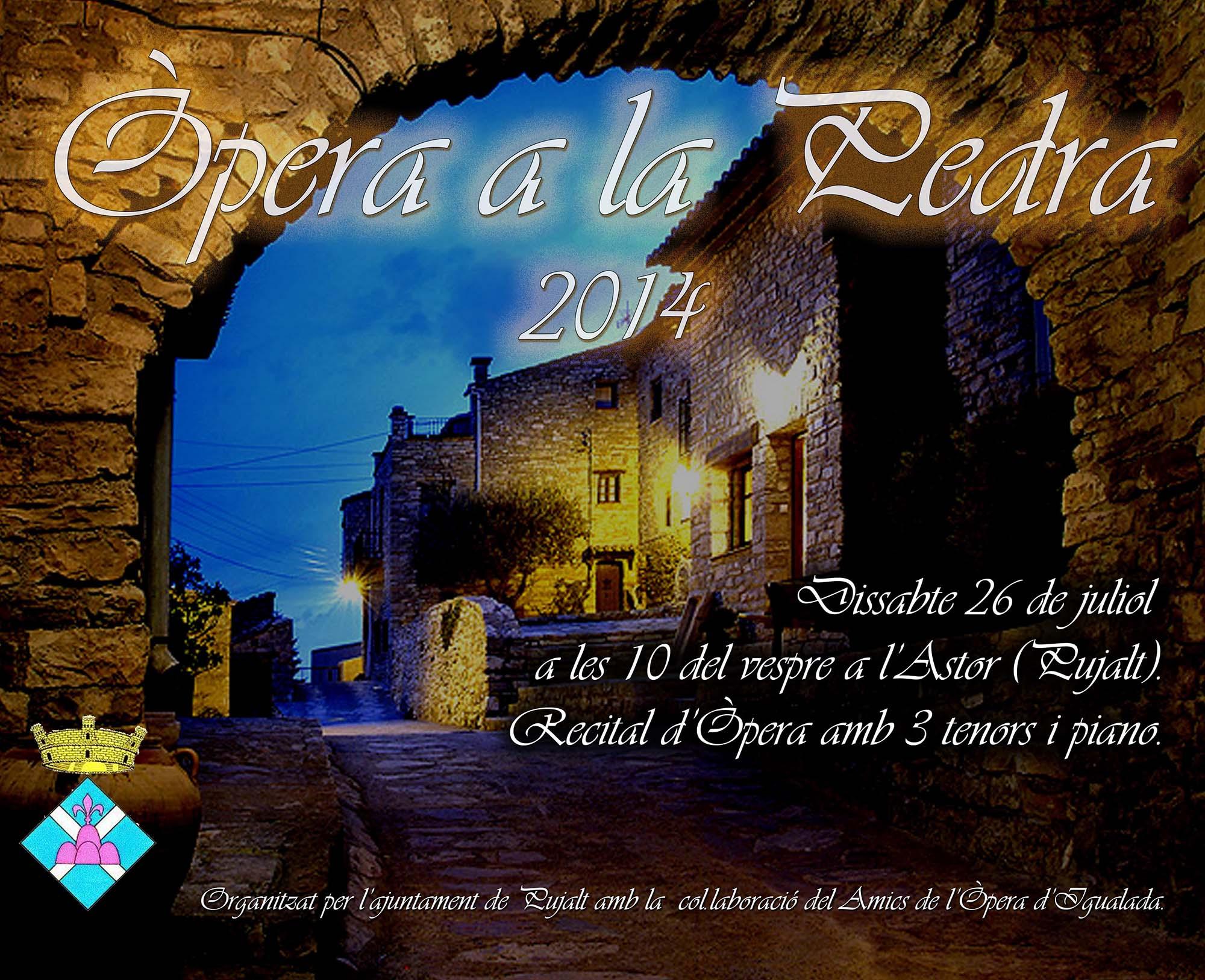 cartell Òpera a la pedra 2014