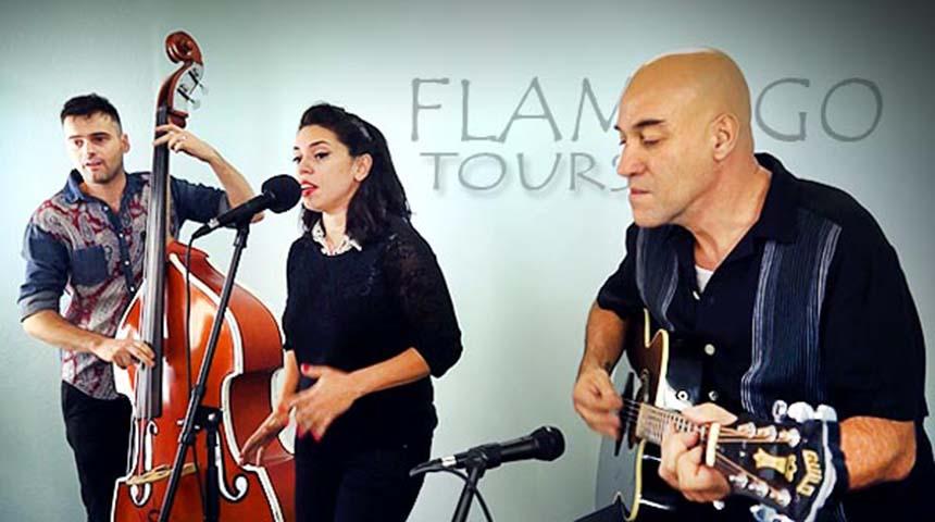 cartell Concert 'Flamingo Tours'
