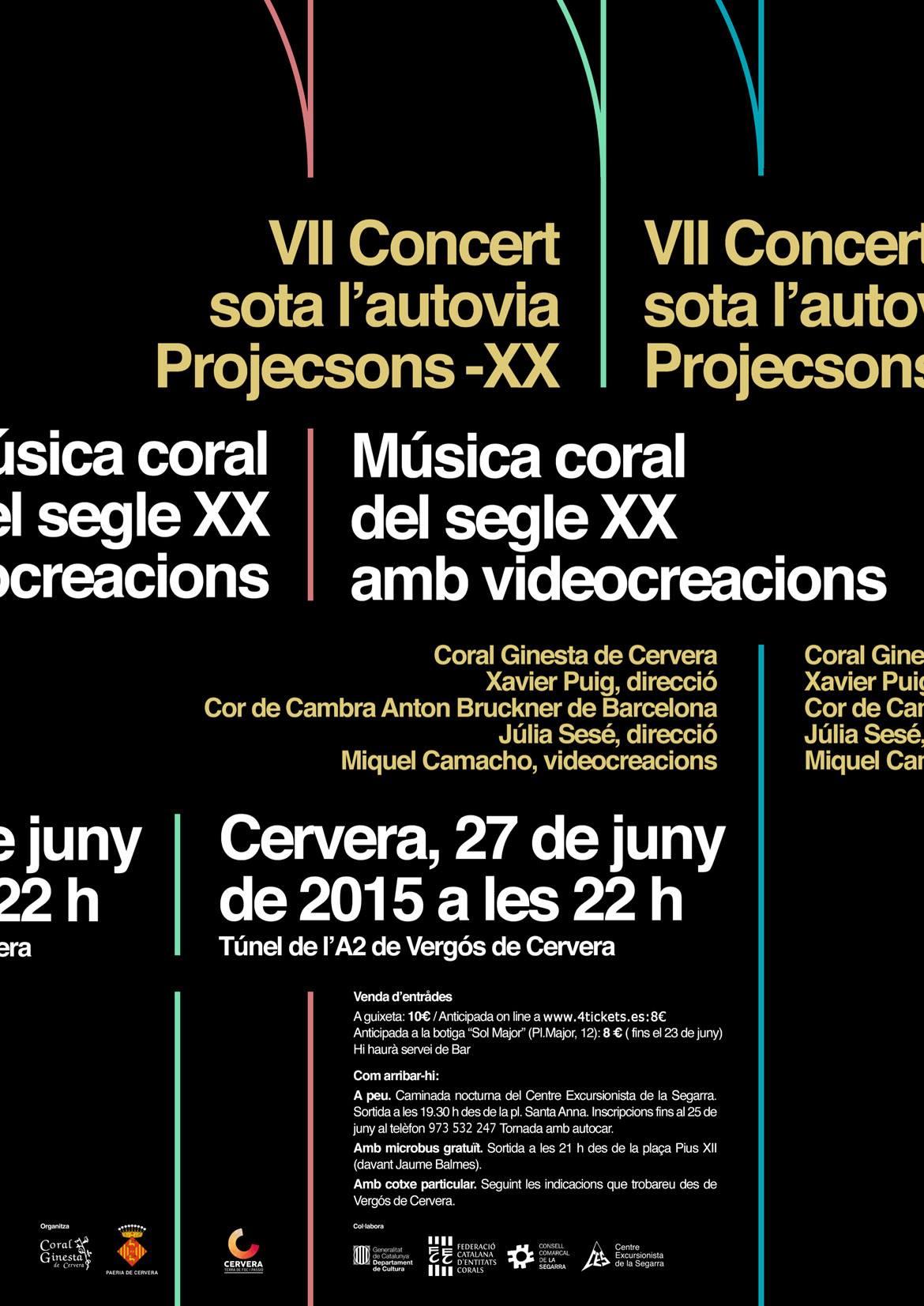 cartell 7è Concert sota l'autovia