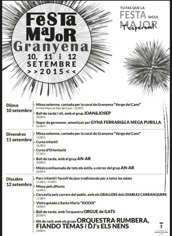 cartell Festa Major de ?Granyena de Segarra 2015